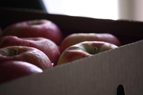 Apples b