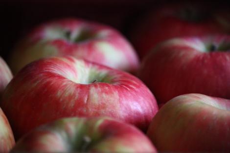Apples a