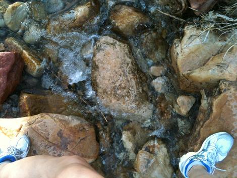Trail run cc
