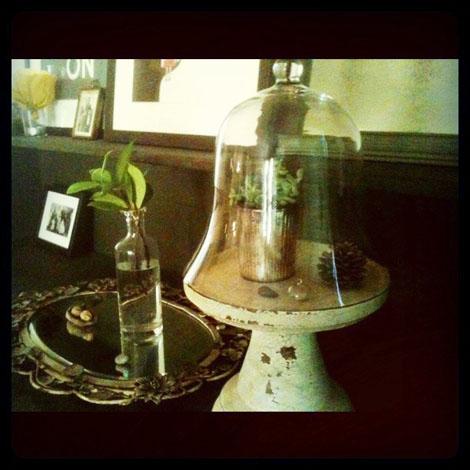 Bell jar tableau