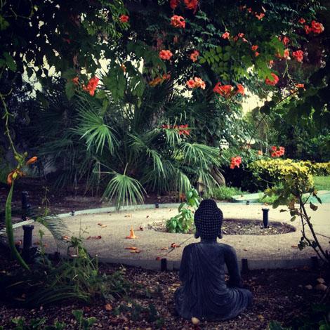 Garden peaceful