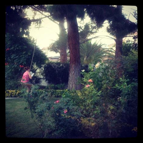 Frisby swing