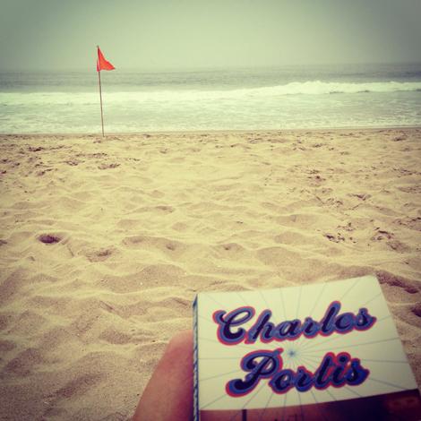 Sand dollar cp